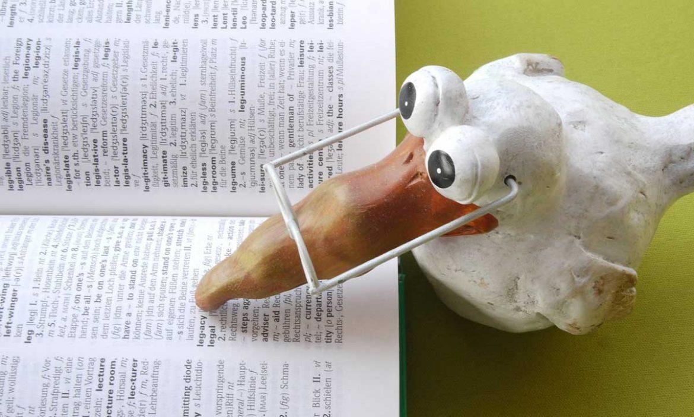 Protranslate: خدمة توفر ترجمة أدبية احترافية عبر شبكة الإنترنت