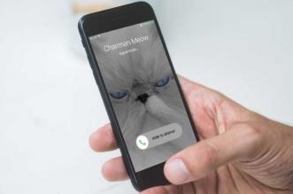 تحديث جديد لتطبيق سيجنال ماسنجر يوفر ميزة مكالمات الفيديو