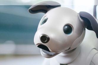 aibo-sony-robot