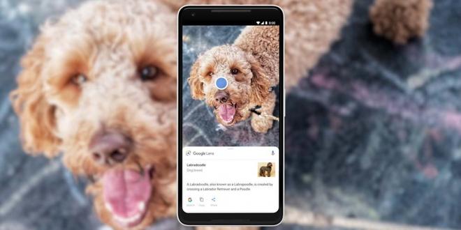 Google Lens تساعدك في تنسيق الألوان ونسخ النصوص من الواقع لهاتفك مباشرة