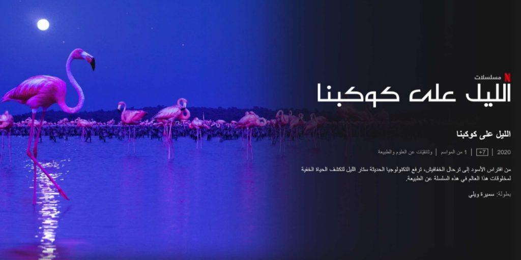 الليل على كوكبنا: كواليس الليل