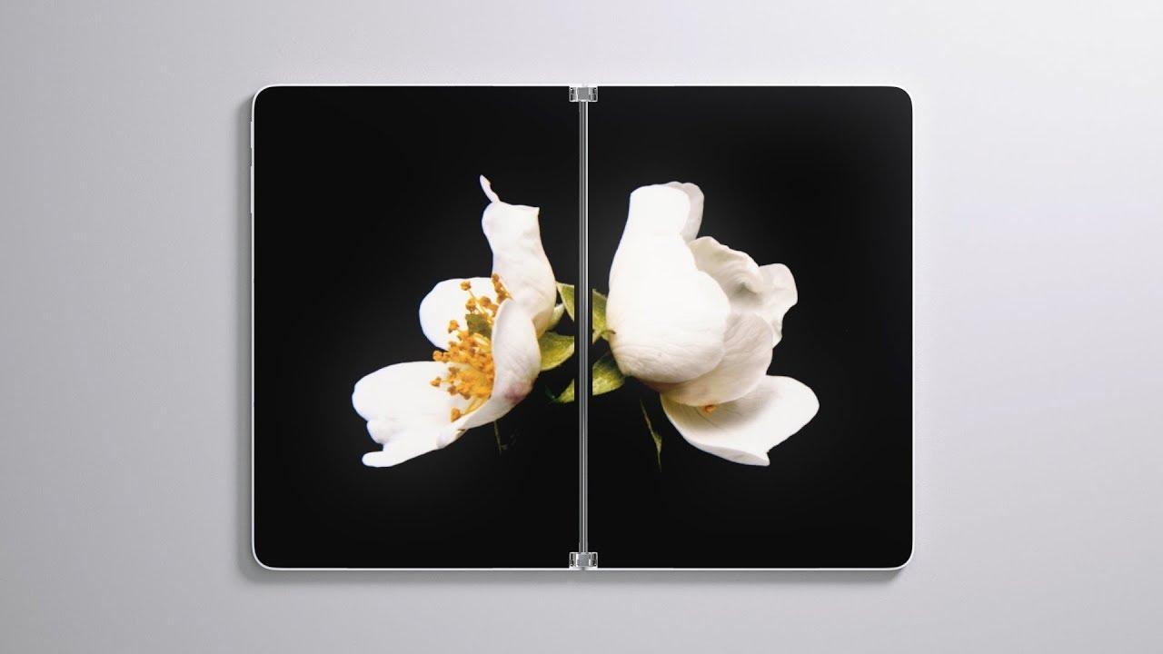 Surface Neo سيرفس نيو