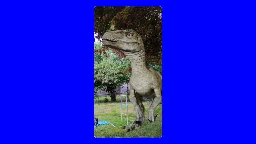 جوجل تتيح عرض الديناصورات مجسمة اعتمادا على تقنية الواقع المعزز