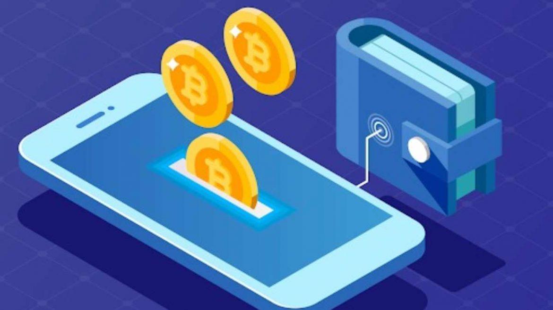 أنواع محافظ العملات الرقمية